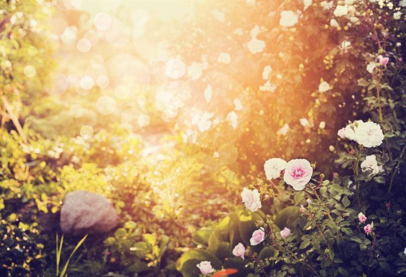 Na antiguidade, apenas o verão e o inverno eram conhecidos. Com a descoberta das outras estações, outono e primavera, foram criados nomes para que as mudanças climáticas fossem registradas.