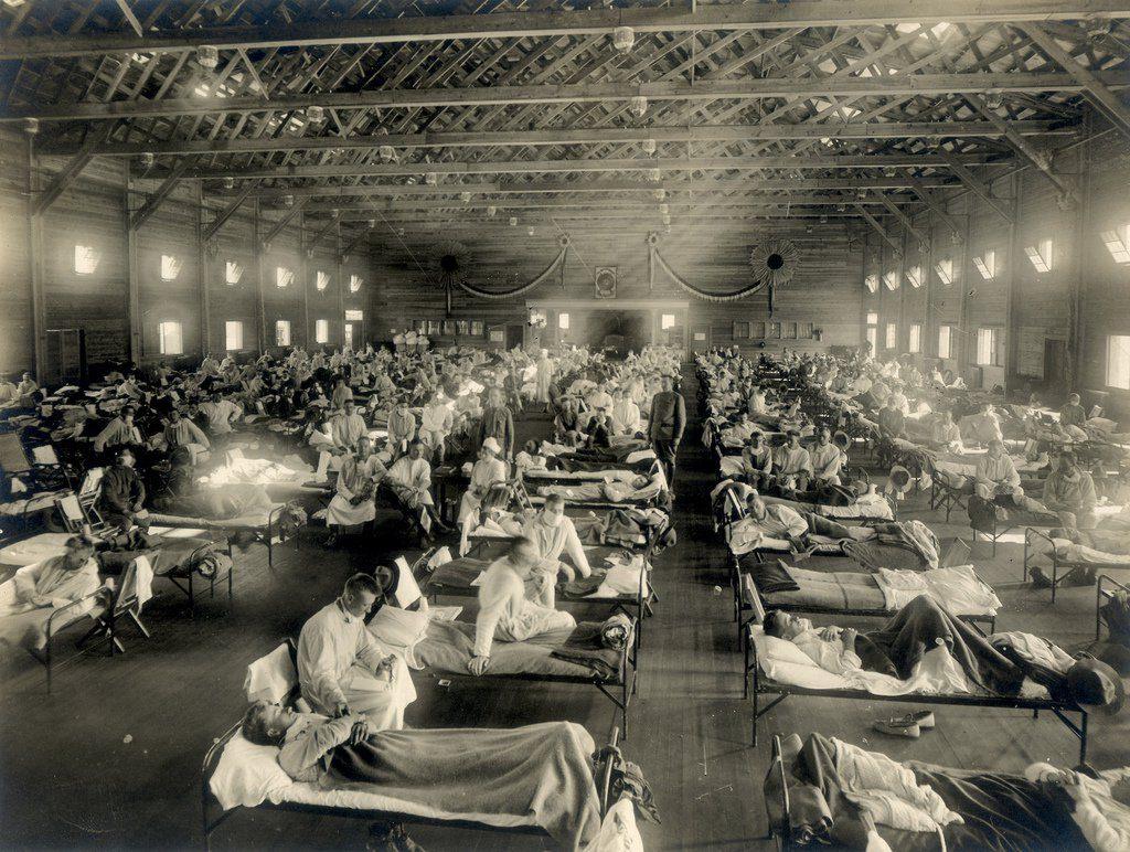 A chamada gripe espanhola, que nada tem de espanhola pois teve início nos Estados Unidos, matou entre 50 e 100 milhões de pessoas em 1918 e 1919.
