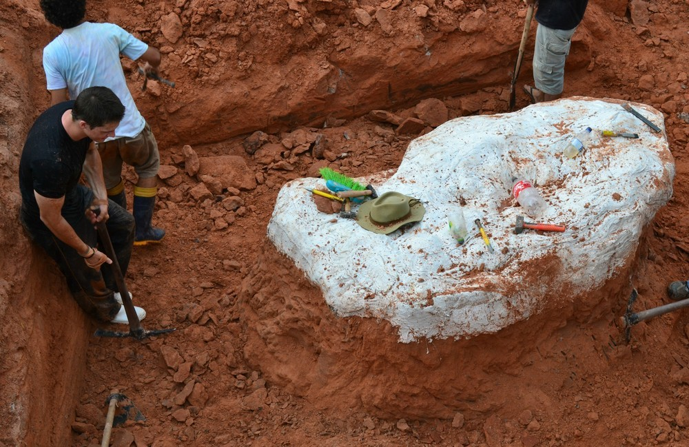 A ossada, da imponente espécie Pescoço Longo, foi encontrada recentemente na cidade de São João do Polêsine, no interior do Rio Grande do Sul. O achado atraiu a atenção do mundo científico que se interessou pela nova descoberta.
