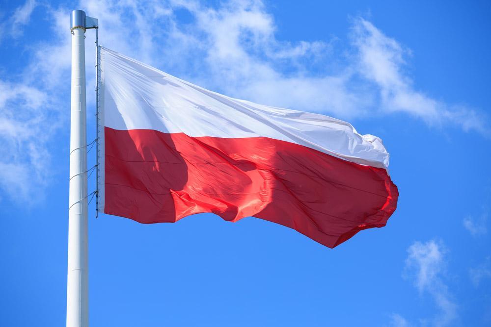 Porém, se chegou após 1918, é preciso apresentar pelo menos um documento diretamente emitido pelo governo polonês, como o Paszport (passaporte), Dowód Osobisty (Carteira de Identidade), Książeczka Wojskowa (Carteira Militar), Wyciąg z Księgi Ludności (Extrato de Registro Civil) ou Poświadczenie Obywatelstwa Polskiego (confirmação de cidadania polonesa). Importante: nenhum documento emitido no Brasil, nem mesmo a Carteira de Estrangeiro, é aceito no processo de solicitação da cidadania polonesa.